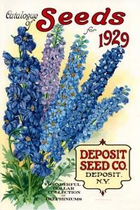 seed pkg